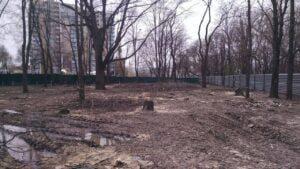 У саду Харкова вирубують десятки дерев
